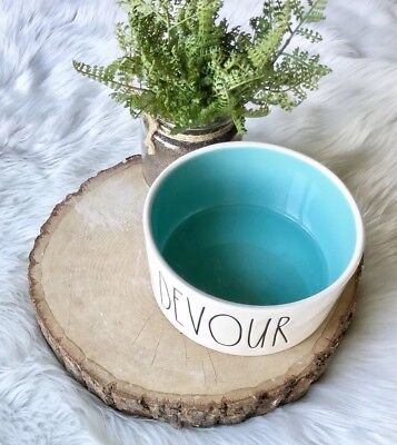 Rae Dunn Large Dog Or Cat Bowl DEVOUR Artisan Collection by Magenta Aqua Blue