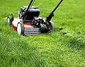 Lawn Cutting Services Montreal