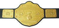 WCW Big Gold Belt NOT WWE version