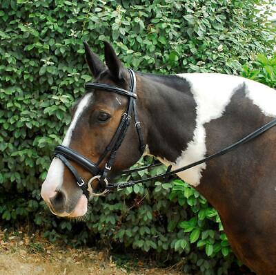 Windsor Leather Comfort Horse Pony Snaffle Bridle, Flash Noseband, Black, Havana Leather Comfort Bridle