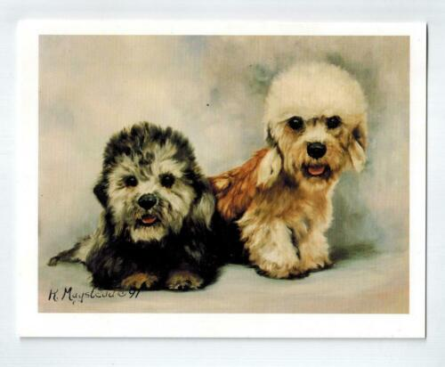 Dandie Dinmont Terrier Pair Notecards Set 12 Note Cards By Ruth Maystead Made US