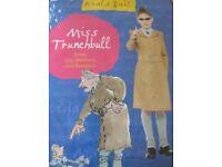 Miss Trunchbull World Book Day costume
