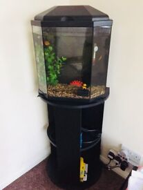 Used fish tank stand