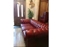 Chesterfield sofa Club chair