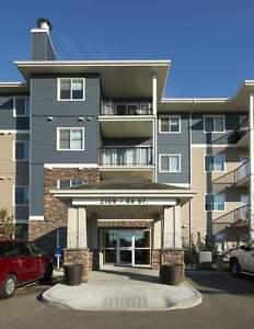 Two Bedroom + Den For Rent at Aurora at Summerside - 2105 68... Edmonton Edmonton Area image 9