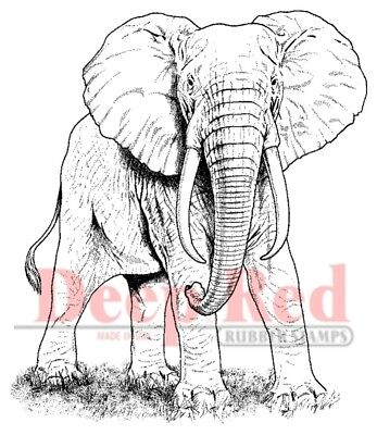 - Deep Red Stamps African Elephant Rubber Cling Stamp