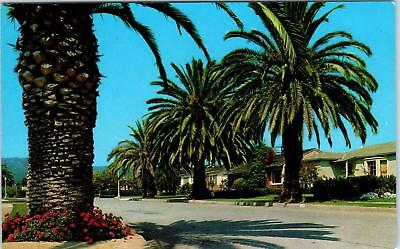 PACIFIC PALISADES, CA California    STREET  SCENE   c1950s   Postcard for sale  Foresthill