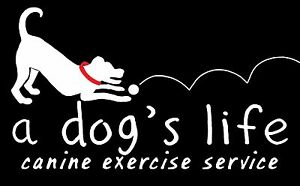 A Dog's Life Canine Exercise Service Brighton Holdfast Bay Preview