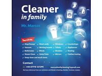 CLEANING SERVICE AND IRONING