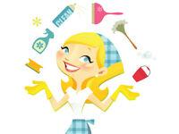 Cleaner / Room Attendat / Housekeeper
