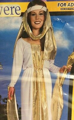 Guinevere Ladies Costume Adult Halloween One Size Fots Most New