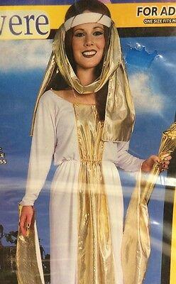 Guinevere Ladies Costume Adult Halloween One Size Fots Most New ](Lady Guinevere Halloween Costumes)