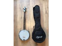 Ozark Banjo, open back - w/ gig bag