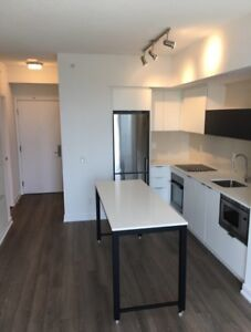 BRAND NEW 1 BED/1BATH CONDO FOR RENT- THE KIP DISTRICT
