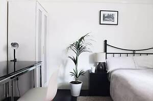 NICE ROOM CLOSE TO NSW Kingsford Eastern Suburbs Preview