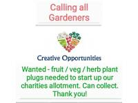 Charity in need of veg,fruit,herb plants
