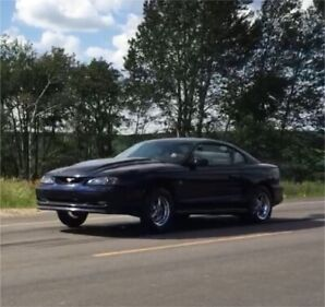 1994 Supercharged Mustang 331