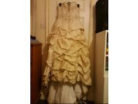 Antique Champagne Crushed Tafetta Over Tulle Chevelle Formal Dress