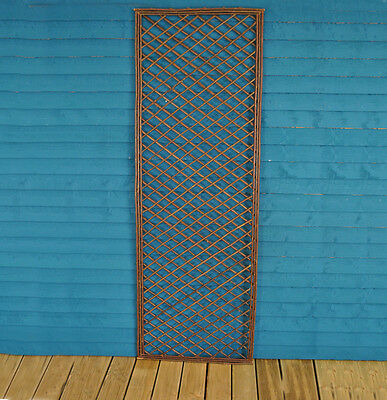 Wooden Trellis Garden Plant Support - Framed Fence Panel 120cm x 45cm *Value*