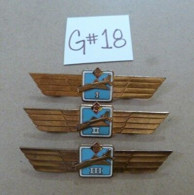 East German Air Force Democratic Republic Wing Badge Pins -G#18