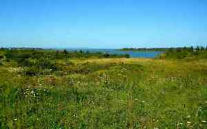 SALE Large Waterfront Harbour Lot Sweet Sunsets- Nr. Antigonish