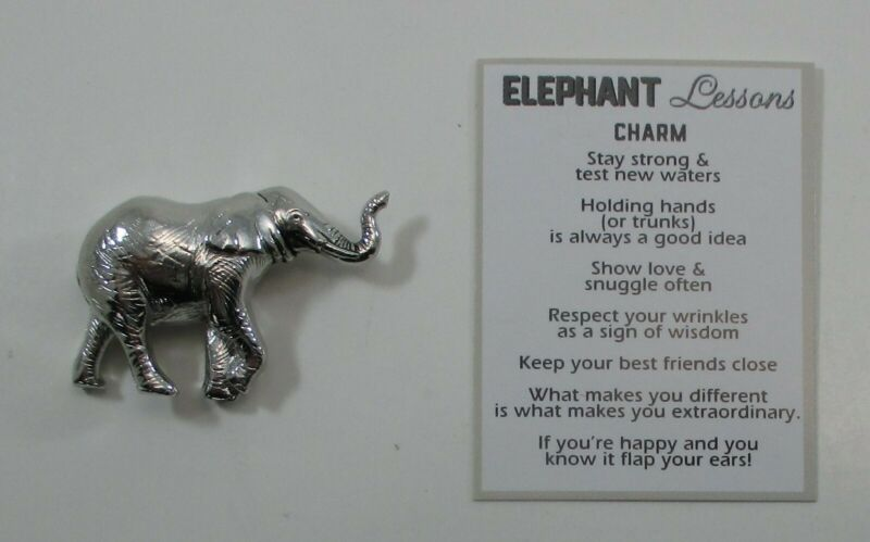 R ELEPHANT LESSON Pocket charm figurine miniature age gracefully stay strong