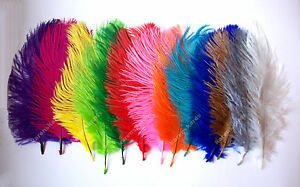 Pack-of-2-OSTRICH-FEATHERS-Approx-7-Inches-Large-Choice-of-Shades