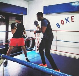 Personal trainer and Boxing Coach