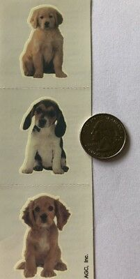 PUPPY TATTOO Sheet(4 Sheets)American Greetings*Dog*Man's Best