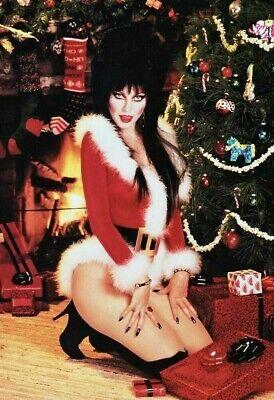 Vintage Mistress of Christmas Photo 882 Oddleys Strange & Bizarre ()