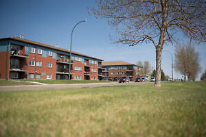 $800 Estevan-1 Bedroom Large Apartment & All Utilities Included