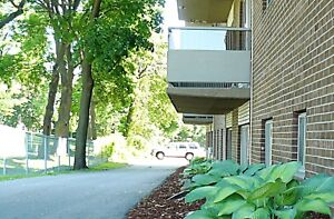 Diplomat Apartments 1BR Senior Perfect!AVAILABLE Dec 1
