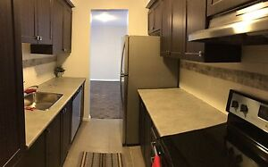 Great value! Newly renovated 2 bdr in aylmer all inclusive!