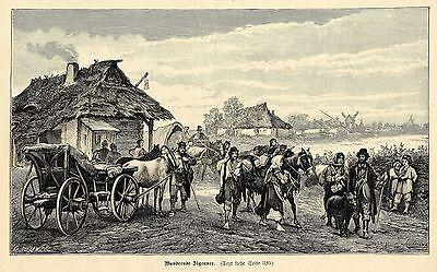 Wandernde Zigeuner Holzstich Graphik von 1899