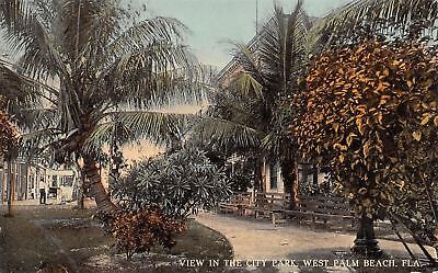 West Palm Beach Florida~City Park Paths to Stores~Wooden Benches~Palms~1908 (City Beach Stores)