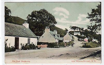 THE PATH, BLACKCRAIG, NEWTON STEWART: Wigtownshire postcard (C20676)
