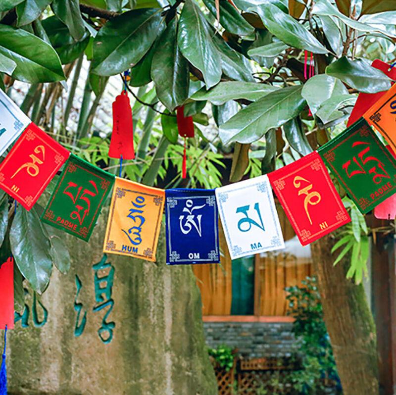10 Flags Tibetan Wind Horse Flag Buddhist Pray Prayer Scriptures Nepal Buddhism