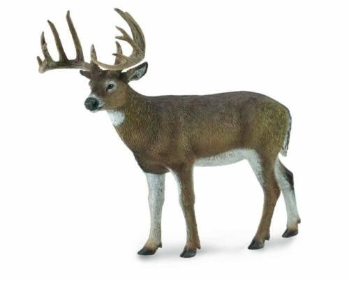 CollectA NEW * White-Tailed Deer *  88832 Wildlife Model Breyer Toy Figurine