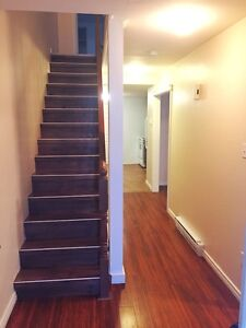 CENTRALLY LOCATED HOUSE FOR LEASE. FULLY RENOVATED St. John's Newfoundland image 4