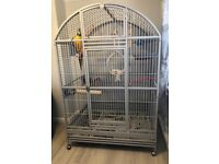 Extra Large Montana Parrot Cage