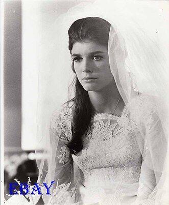 Katharine Ross The Graduate Vintage Photo