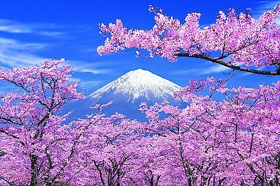 New Epoch Jigsaw Puzzle Japanese Scenery Cherry Blossom Mt. Fuji 1000 pieces