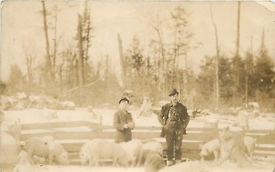 Farmers in Pigpen With Rooting Pigs~Snow Covered Trees~Bowler Hats~c1914 RPPC