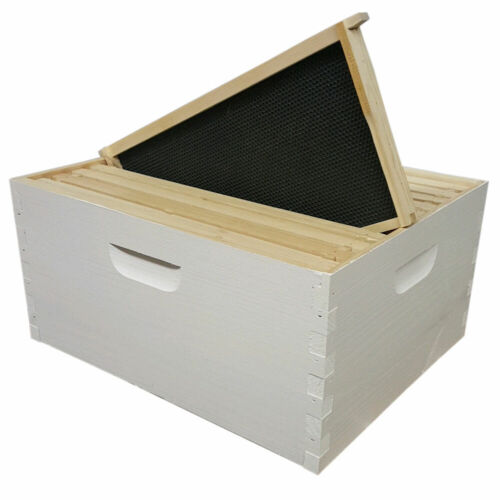 Assembled & Painted Langstroth 10 Frame Deep Box w/ Frames and Foundations