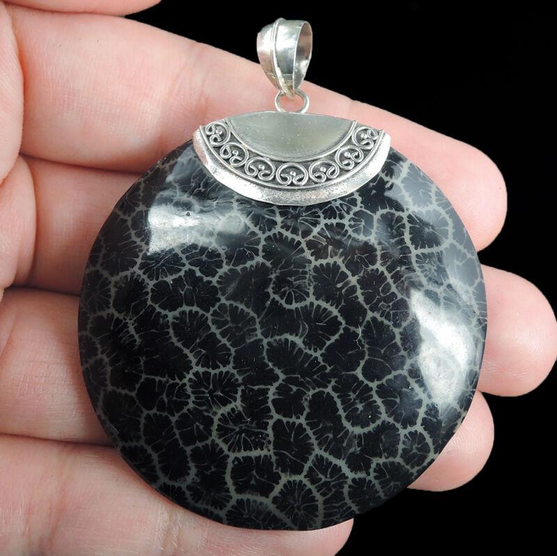 Artificially coloured Black Coral