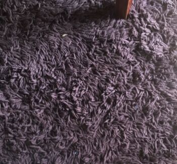 FREE large brown shag rug
