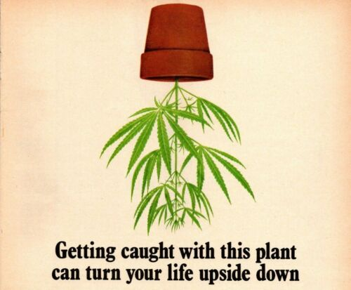 1978 Vintage Print Ad NORML Join Marijuana Reform Getting Caught Arrest