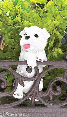 (WHITE Terrier puppy dog climbing fence hanging outdoor garden statue patio yard)