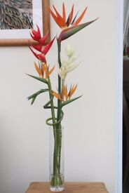 BIRD OF PARADISE WITH HELICONIA