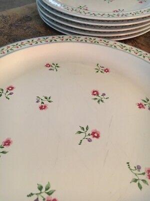 Sakura PLAIN AND FANCY Dinner Plates Salad Plate Serving Platter ()